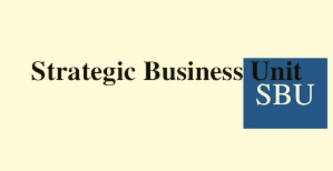 What is a Strategic Business Unit? How to set it up